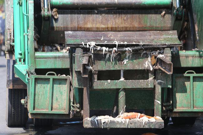 Cá chết ở Hồ Tây: Dân bịt mũi, quán đóng cửa vì mùi hôi thối - 17