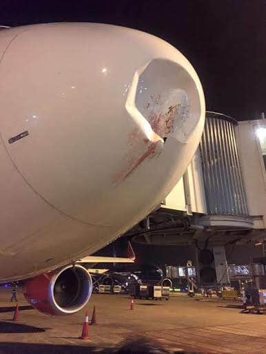 2 máy bay Vietnam Airlines bị chim trời đâm vào động cơ - 1