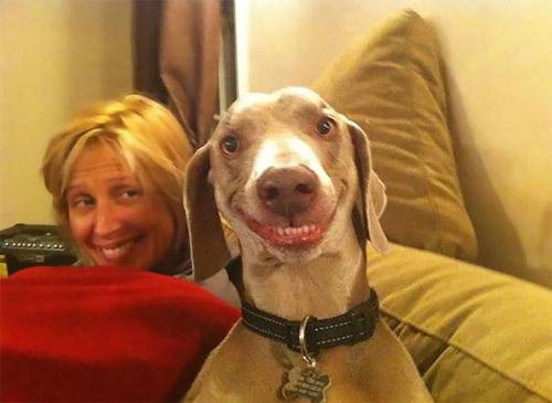 Loài vật cười khác loài người như thế nào! - 5