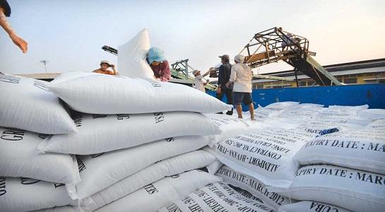 Gạo VN đứng trước nguy cơ bị cấm nhập khẩu vào Mỹ - 1