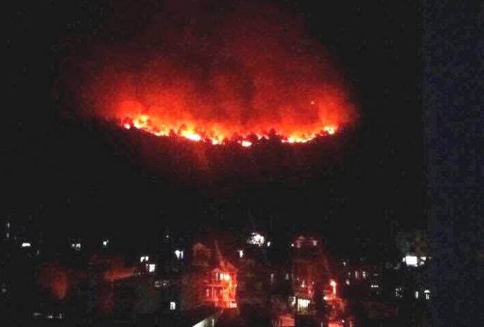Cháy rừng dữ dội ngay giữa TP. Hạ Long - 1
