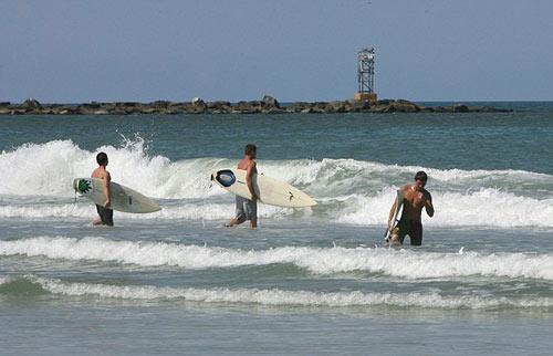 Vận động viên lướt sóng vật vã đấu cá mập - 3