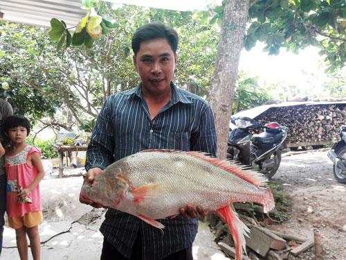 Ngư dân bắt được con cá toàn thân vàng óng quý hiếm - 5