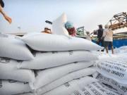Thị trường - Tiêu dùng - Gạo VN đứng trước nguy cơ bị cấm nhập khẩu vào Mỹ