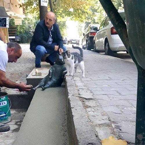 """Chú mèo ngồi """"bá đạo"""" được tạc tượng sau khi qua đời - 4"""