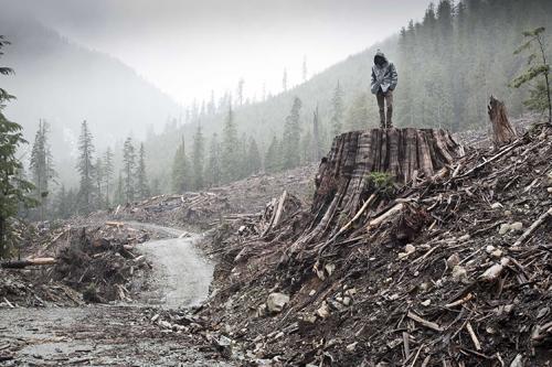 Những bộ phim về thảm họa môi trường gây nhức nhối nhân loại - 1