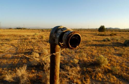 Những bộ phim về thảm họa môi trường gây nhức nhối nhân loại - 13