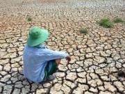 Tin tức trong ngày - Ảnh: Ruộng nứt toác, mặn chát, lòng dạ như bị xát muối