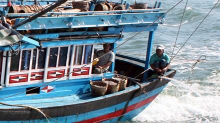 Nhiều ngư dân mất tích vì đi… vệ sinh - 1