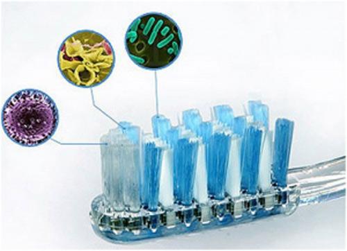 Kinh hoàng ổ vi khuẩn trên bàn chải đánh răng - 1
