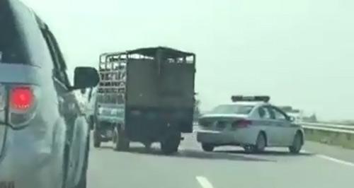 Lái xe chở lợn bỏ chạy đánh võng trên cao tốc Hà Nội - Lào Cai - 1