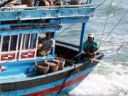 Tin tức trong ngày - Nhiều ngư dân mất tích vì đi… vệ sinh