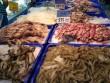 EU cảnh báo 11 lô hàng thủy sản từ Việt Nam