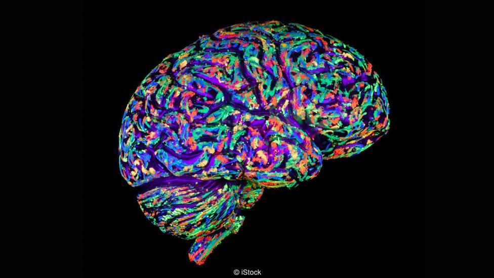 Có thể nuôi não người biết suy nghĩ ngoài cơ thể? - 5