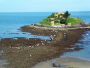 Du lịch - Kỳ lạ con đường rẽ đôi biển tại Vũng Tàu