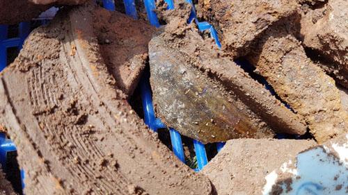 Phát hiện nền đất lạ ở khu vực khảo cổ tìm mộ Quang Trung - 1