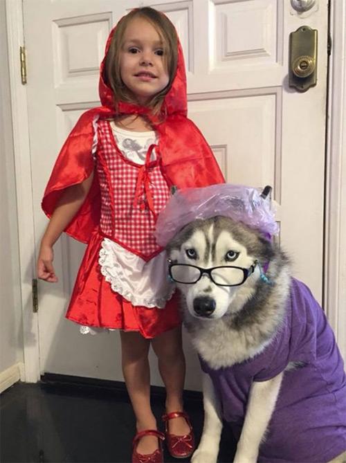 """""""Đau ruột"""" xem các bé hóa trang đón Halloween - 2"""