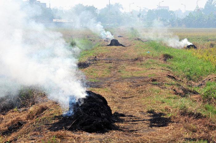 Ngột ngạt, cay mắt vì khói mù ở Hà Nội - 12