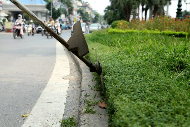 Hà Nội nhộn nhịp cắt cỏ trở lại sau 3 tháng tạm dừng - 3