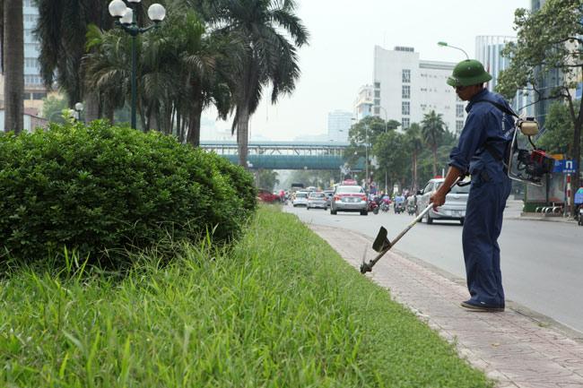 Hà Nội sẽ cắt cỏ ưu tiên từng khu vực - 1