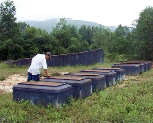 Chuyện lạ ở Huế: Hàng ngàn ngôi mộ bị đóng đinh - 1