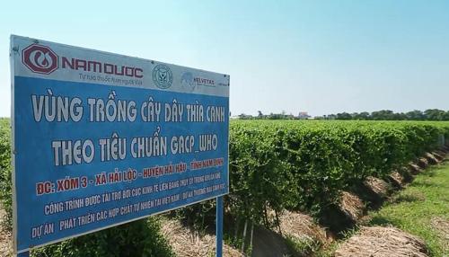 Sự thật về Đông y chữa tiểu đường ở Việt Nam - 3
