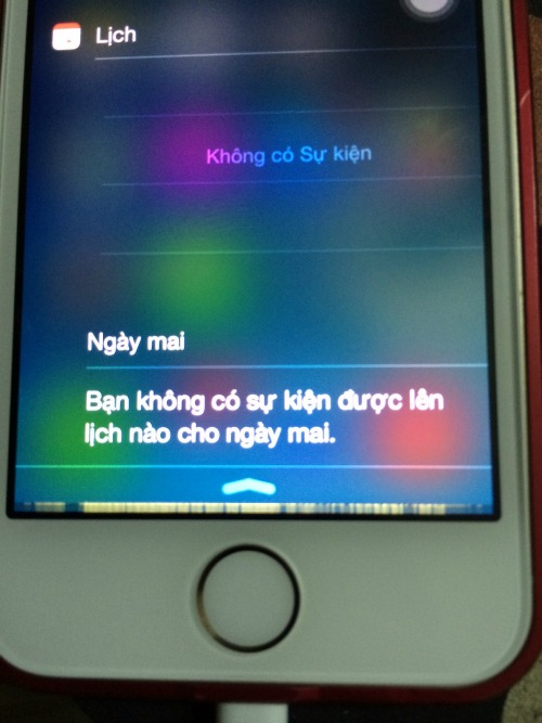 Apple sắp phải hầu tòa vì lỗi iPhone 6 và iPhone 6 Plus - 1