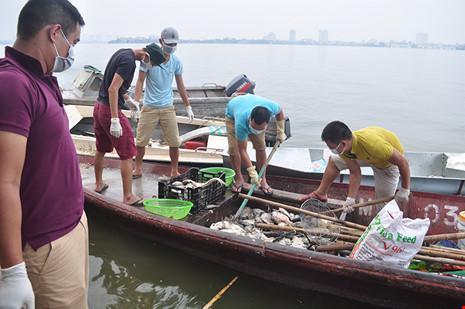 Cá chết Hồ Tây: Nhà máy 1.000 tỉ phải 'xin' nước thải - 1