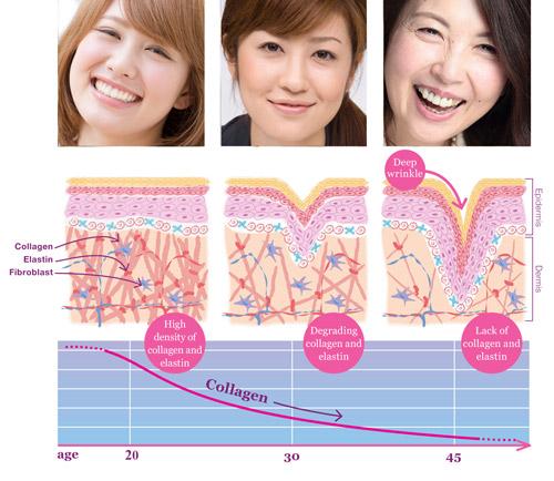 Collagen: Dùng nhiều sao vẫn kém hiệu quả? - 2
