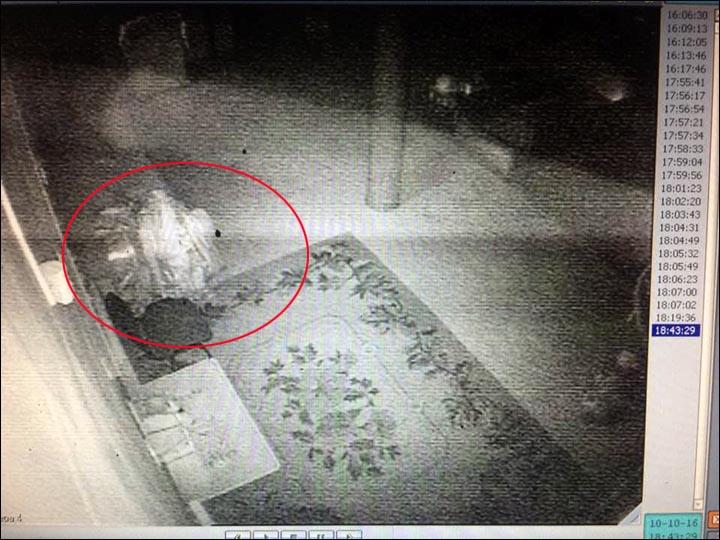 Xác ướp 164 tuổi tỉnh giấc, đi lại trong tu viện ở Nga? - 3