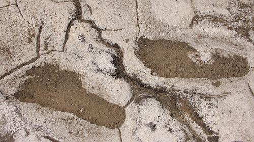 Tìm thấy 400 dấu chân người nguyên vẹn 19.000 năm trước - 4