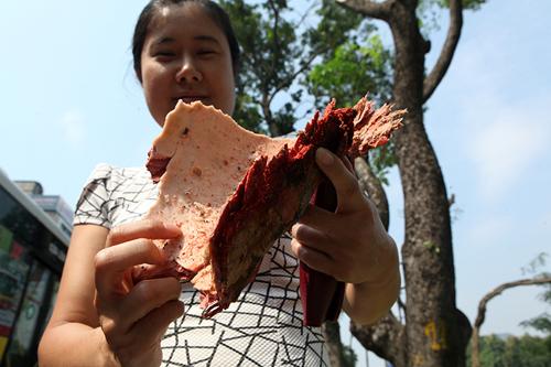Tiếc nuối hàng cây Kim Mã, dân nhặt vỏ cây làm kỉ niệm - 5
