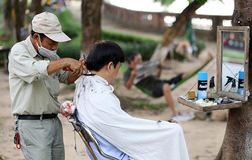 Tiếc nuối hàng cây Kim Mã, dân nhặt vỏ cây làm kỉ niệm - 8