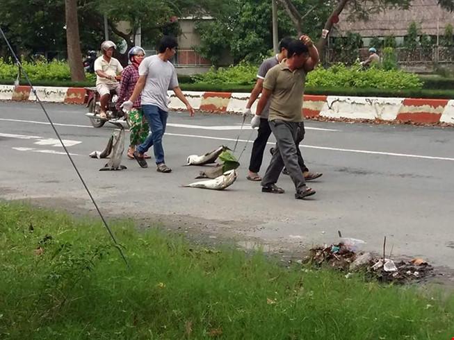 Dân kéo lê xác cá 'chặn' quốc lộ 51 - 3