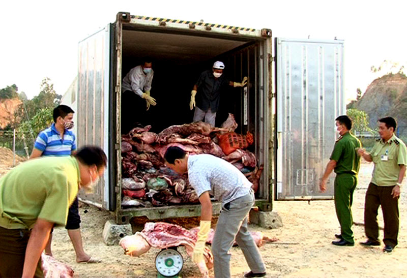 Mua 10 tấn thịt lợn chết thối mang bán kiếm lời - 2