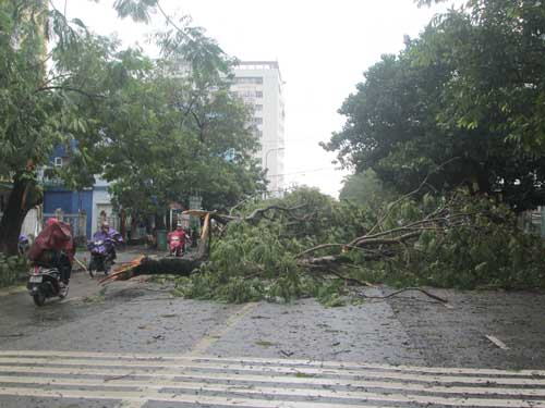 Hai người chết và mất tích do áp thất nhiệt đới ở Huế - 2