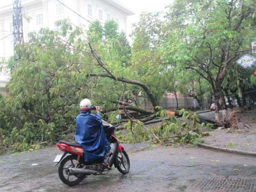 Hai người chết và mất tích do áp thất nhiệt đới ở Huế - 5