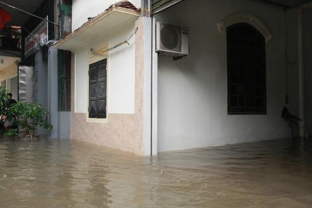 Nghệ An chìm trong biển nước, dân bỏ nhà chạy lũ - 11