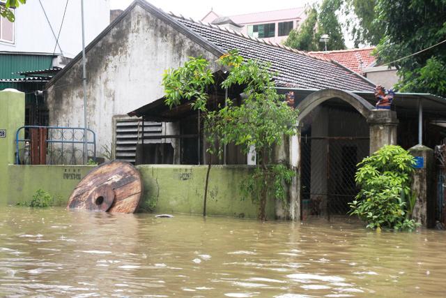 Nghệ An chìm trong biển nước, dân bỏ nhà chạy lũ - 12