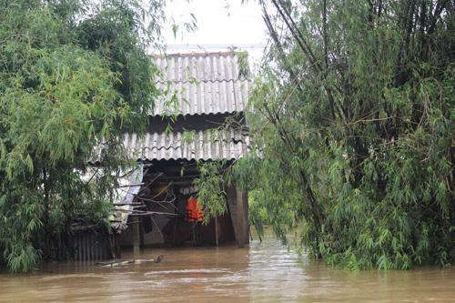 Ảnh: Nước mênh mông, người Huế đi thuyền từ nhà ra ngõ - 6