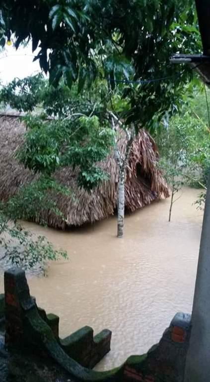 Chùm ảnh: Dân bám nóc nhà tránh lũ ở Quảng Bình - 6