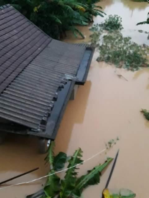Chùm ảnh: Dân bám nóc nhà tránh lũ ở Quảng Bình - 7