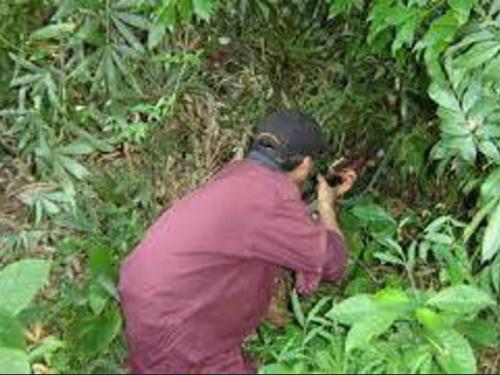 Nhắm bắn thú rừng, trúng người đi bắt dúi - 1