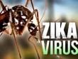 Thêm 2 người Việt Nam nhiễm Zika  tại TP. Hồ Chí Minh