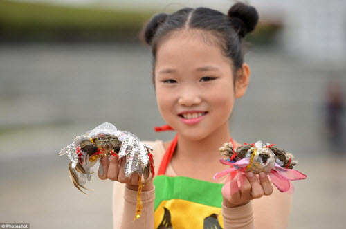 Độc đáo cuộc thi thời trang cua ở Trung Quốc - 5
