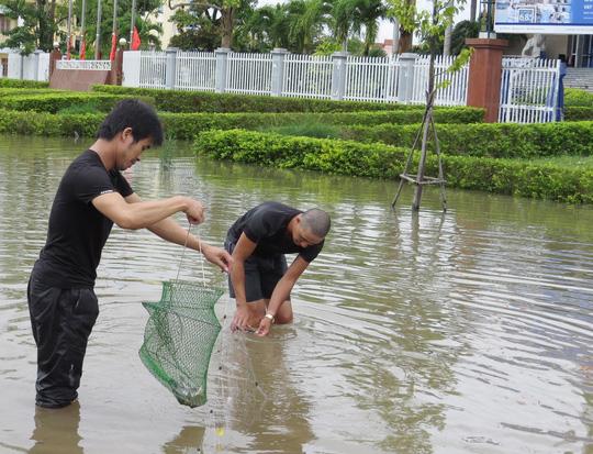 """Lần đầu tiên TP Đồng Hới ngập sâu, người dân """"câu"""" cá trong nhà - 1"""