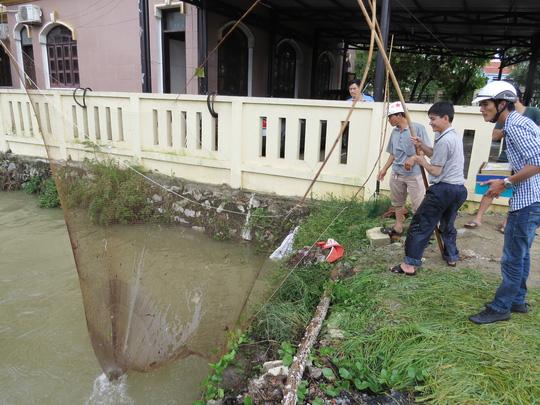 """Lần đầu tiên TP Đồng Hới ngập sâu, người dân """"câu"""" cá trong nhà - 4"""
