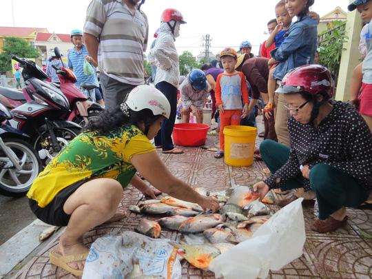 """Lần đầu tiên TP Đồng Hới ngập sâu, người dân """"câu"""" cá trong nhà - 5"""