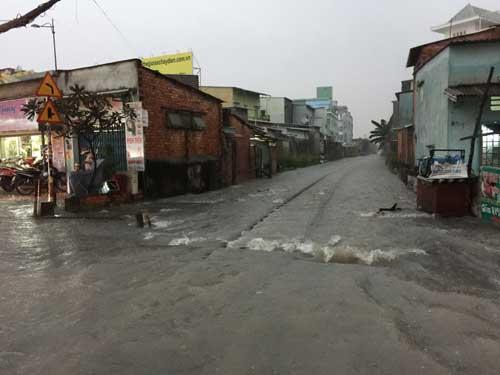 TPHCM: Mưa kết hợp với triều cường, nước chảy ào ạt vào nhà dân - 13