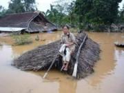 Tin tức trong ngày - Quảng Bình: Kêu gọi khẩn cấp cứu đói cho dân